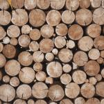 casette porta legna da esterno