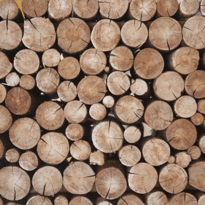 Guida e caratteristiche delle casette porta legna da esterno
